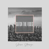 Catch the Foxes (single)
